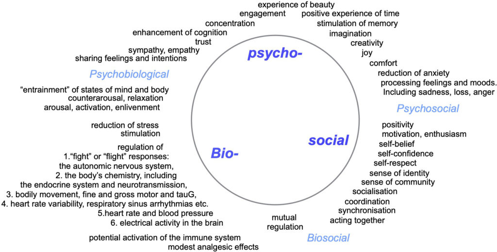 Bio-psycho-social model for music and wellbeing